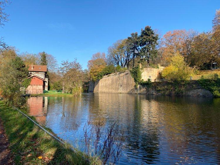 Metz Ville d'eau : une baignade naturelle au coeur de la ville !